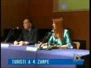 fermo2010-06-14-10h14m42s163TELESTUDIO