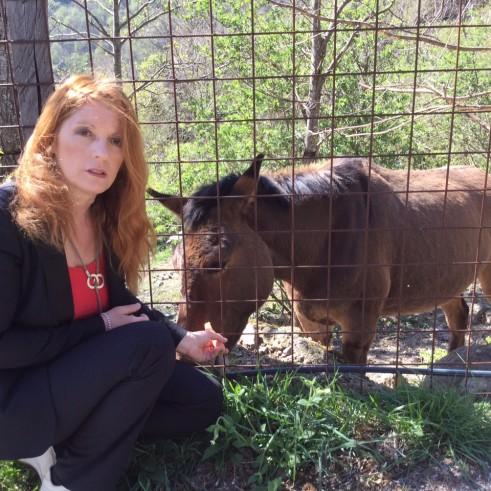 Michela Vittoria Brambilla liberazione cavalli_foto 2
