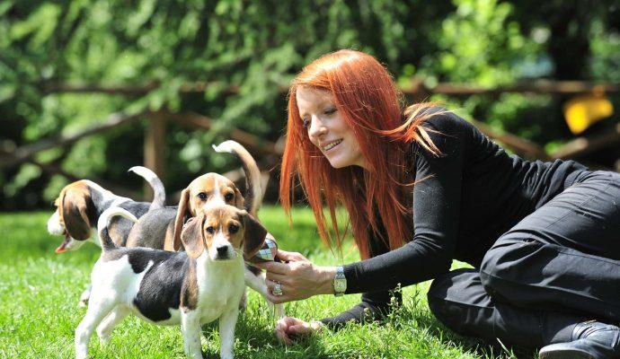 Michela Vittoria Brambilla con beagle 2